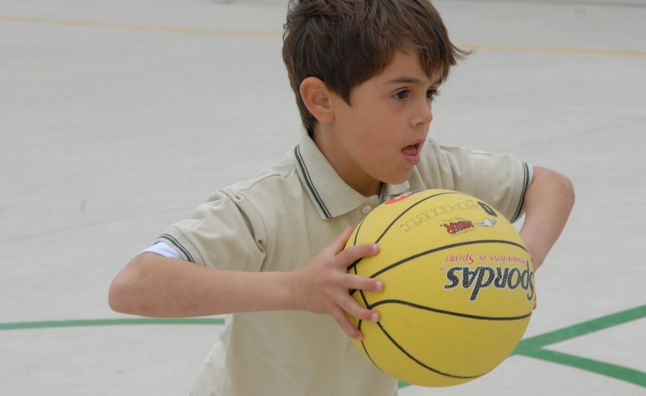 Bambino_basket